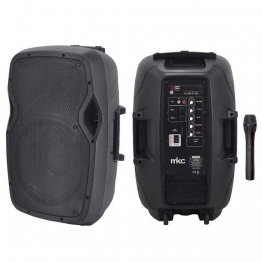 Cassa Amplificata Portatile con Microfono Wireless, MP3, Radio FM, USB, Slot SD e Bluetooth