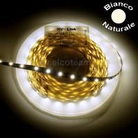 Striscia LED 5 Metri Colore Bianco Naturale 12 VDC IP65 4,8W/m