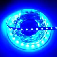 Striscia LED 5 Metri Colore Blu 12VDC 14,4W/m IP65
