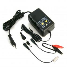 Alcapower AP6168 Caricabatteria Universale 1000mA per pacchi batterie Ni-Cd e Ni-Mh fino a 10 celle