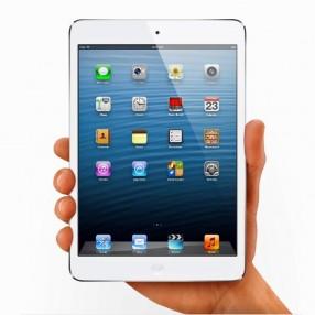 Apple® iPad® mini