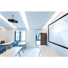 Supporto da soffitto per proiettori NewStar BEAMER-C80