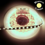 Striscia LED 5 Metri Colore Bianco Caldo 12VDC 14,4W/m IP33