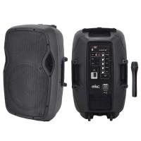 Cassa Amplificata Portatile con Microfono Wireless, MP3, Radio FM, USB, Slot SD e Bluetooth