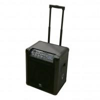 Cassa attiva amplificata a batteria con lettore MP3 Zzip MPA8
